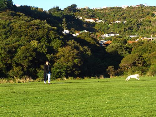 Ball spielen im Park