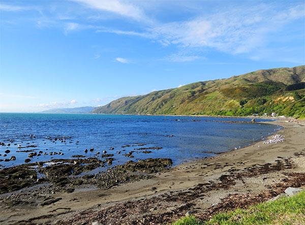 @ Pukerua Bay
