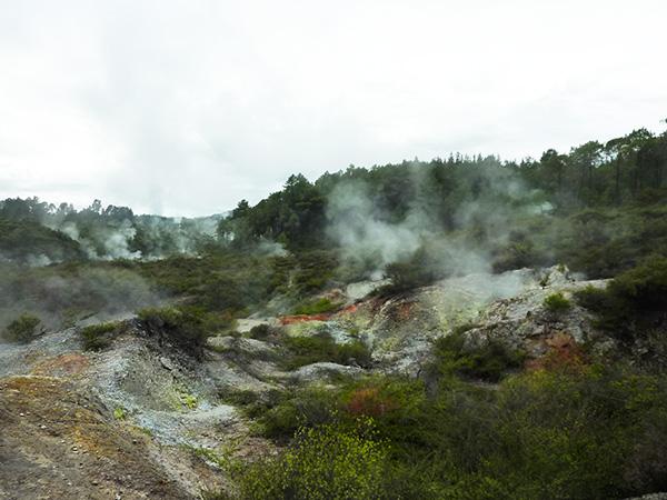 Rotorua 2013